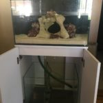 Setting up the new Marine Tank and fun with Plumbing